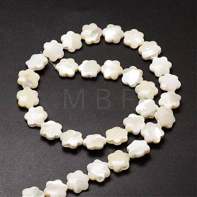 Natural Trochid Shell/Trochus Shell Beads StrandsSSHEL-K010-03-1