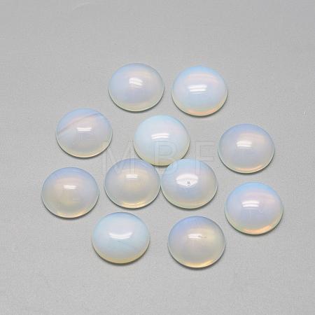 Opalite CabochonsX-G-R416-12mm-49-1