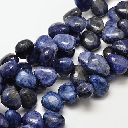 Natural Sodalite Teardrop BeadsG-P094-07-1